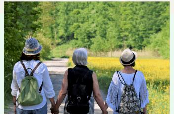 Older Adult Diversity