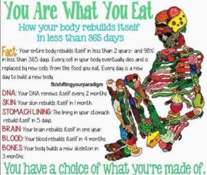 Fixing your body meal by meal